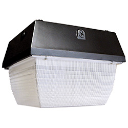 TL401 Series Small, Square Canopy, MH, 50-70W