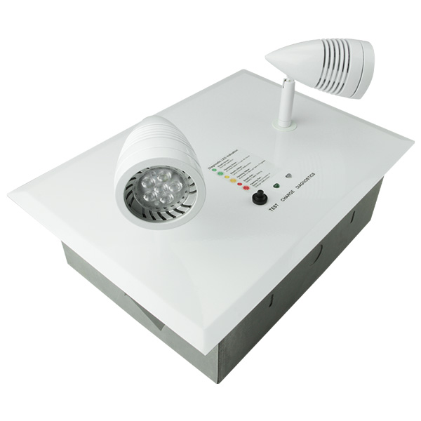RMW Series Architectural Recessed Emergency Lighting Unit